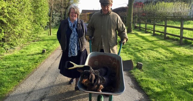 Couple walking down grassy path with 2 dogs in a wheelbarrow