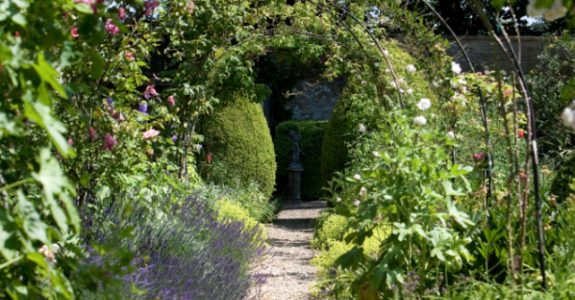 Tunnel walk of rose arches in Guyers House gardens