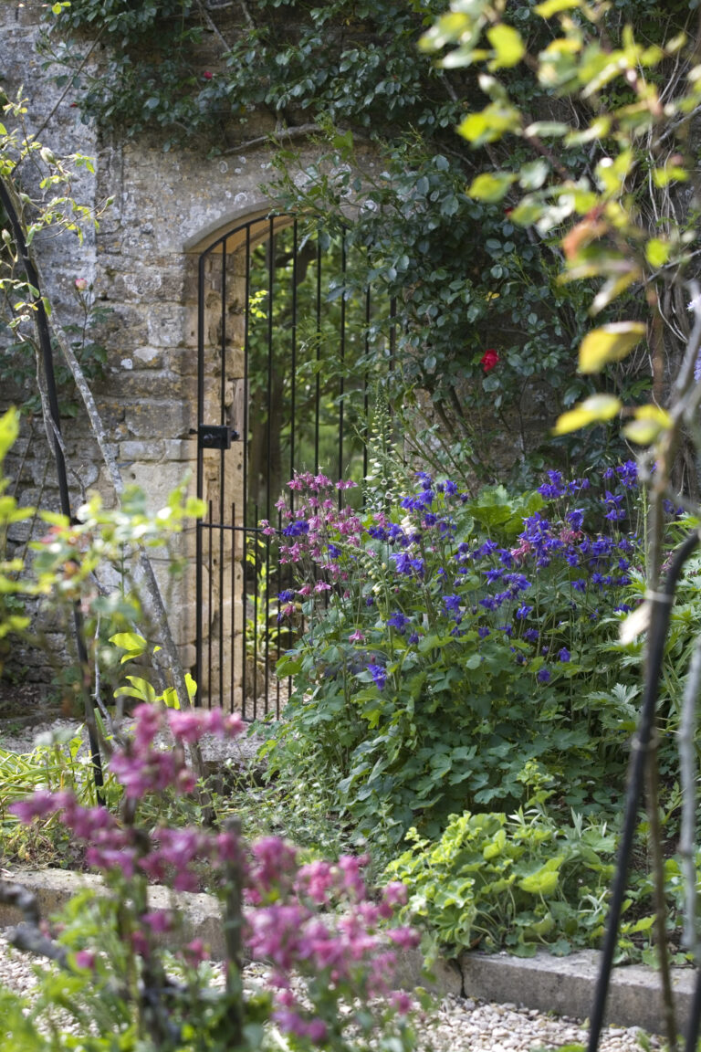 Flowers, ivy and garden gate of walled garden