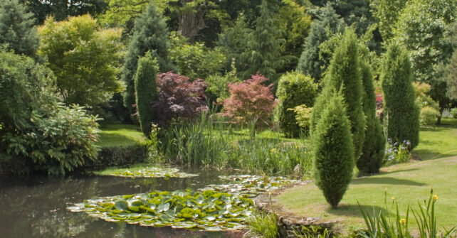 Pond and gardens at Guyers House Hotel & Restaurant