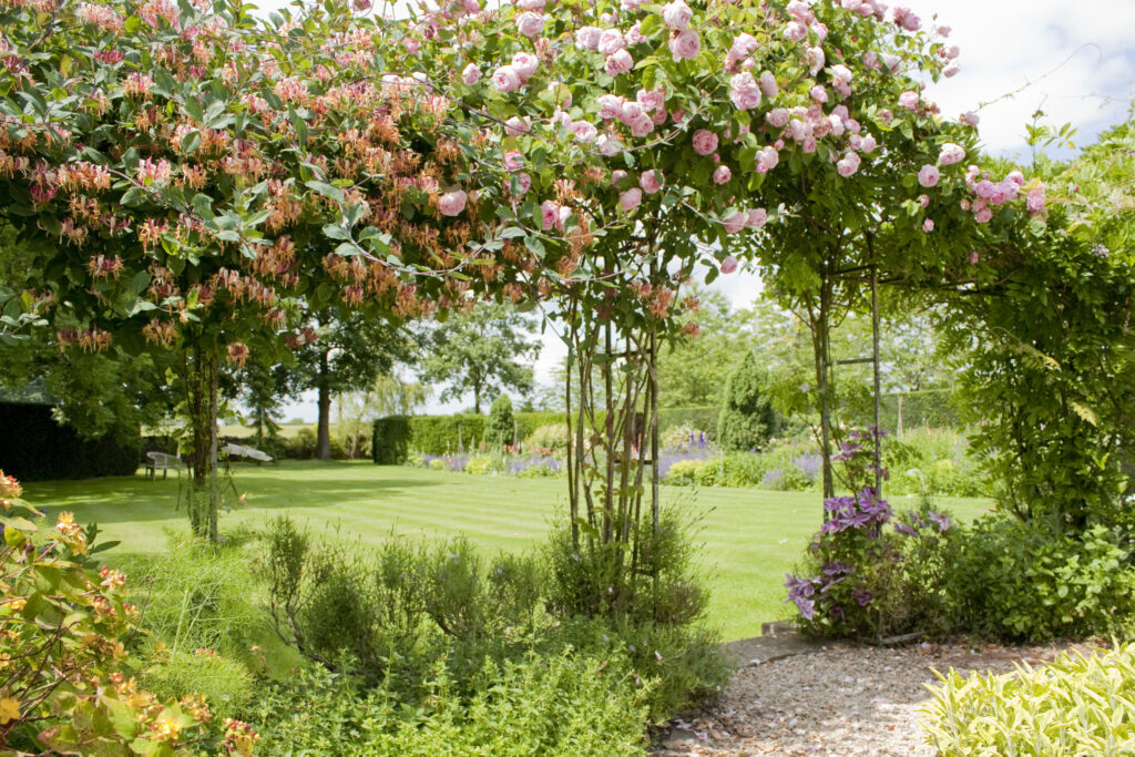 Rose arches, trees, manicured lawn and flowers in grounds of Guyers House