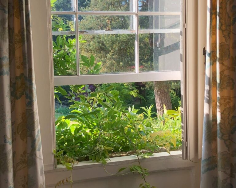 Open window looking out over lawns and trees with plant spilling over the windowsill