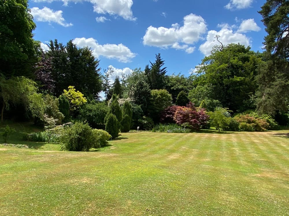 Lawns, shrubs and hedges at Guyers House Hotel