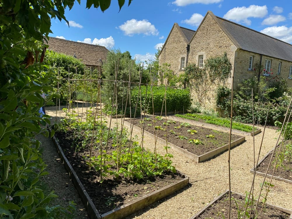 Outdoor allotment area at Guyers House Hotel